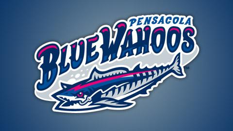 BlueWahoo