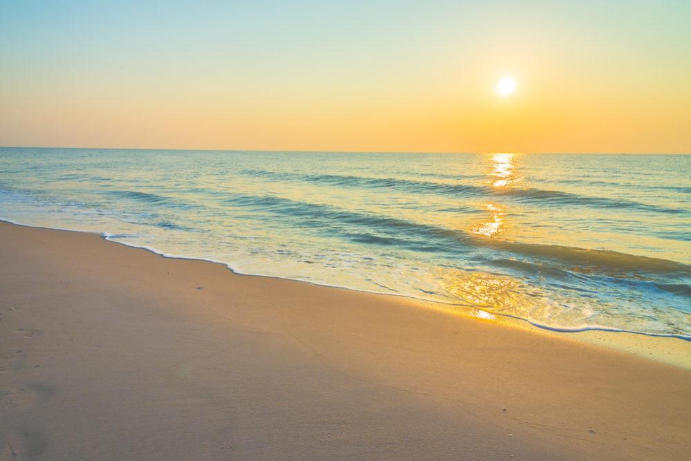simple beach landscape. group protests fee simple transfer on pensacola beach landscape e